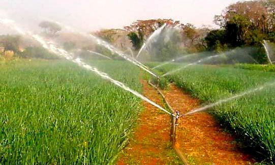 A grandeza do mercado de irrigação