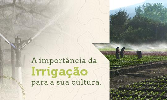 A importância da Irrigação para a sua cultura