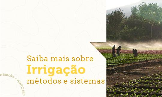 Saiba mais sobre a Irrigação, seus métodos e sistemas
