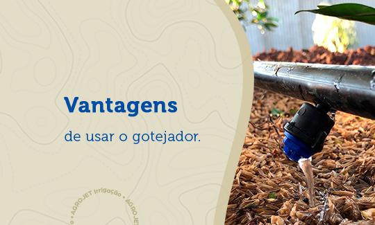 Vantagens de usar o gotejador para irrigação